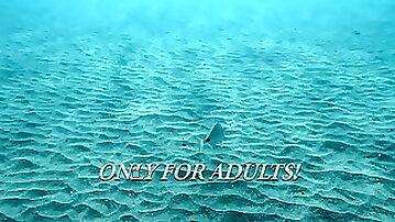Submerged Hot Babes Underwater